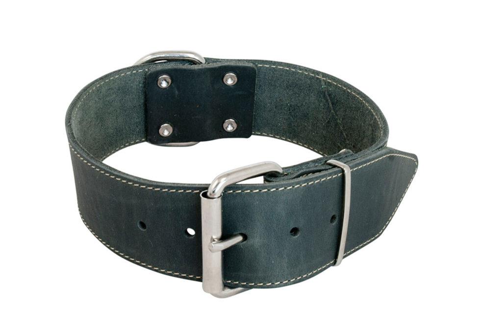 brede leren halsbanden voor honden