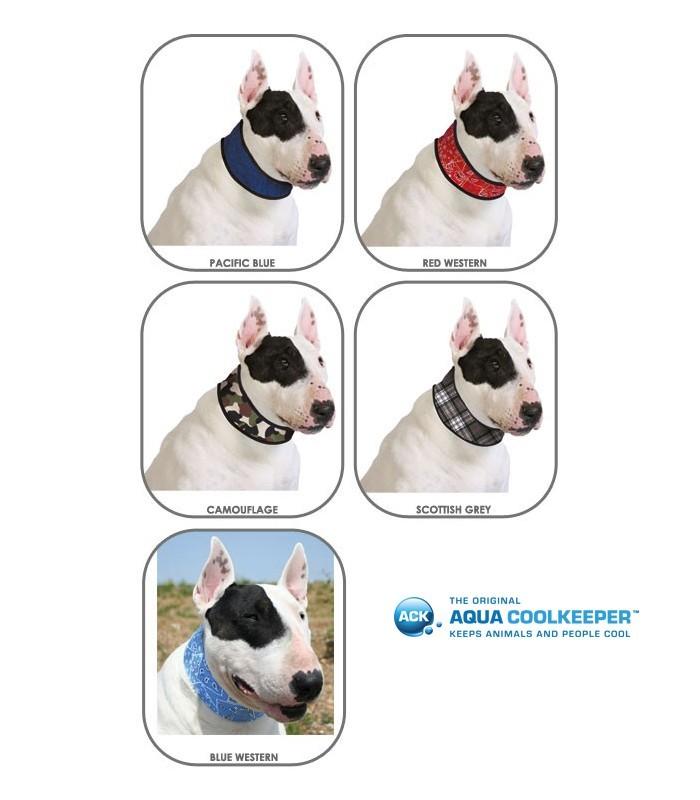 coole halsband hond