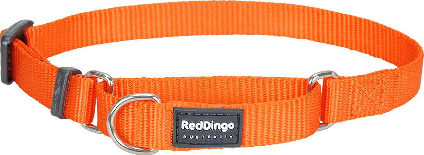 Halsband hond oranje
