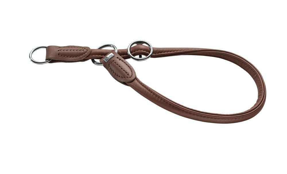 Halsband hond training