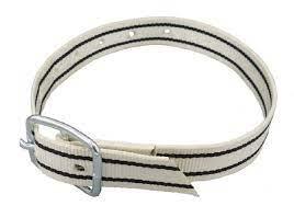 Nylon halsband met gesp