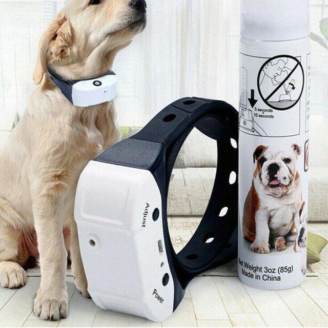 Correctie hondenhalsband geuren