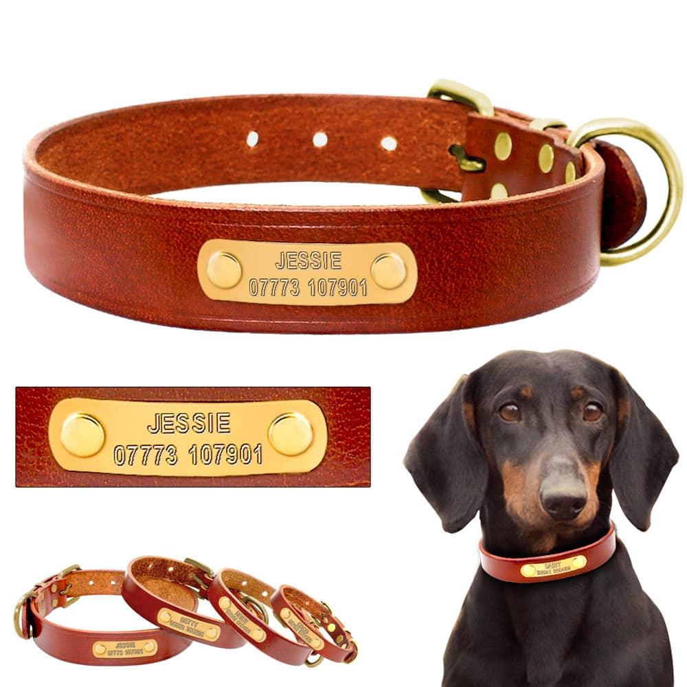 halsband naamplaatje hond