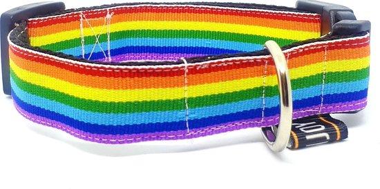 Regenboog halsband hond
