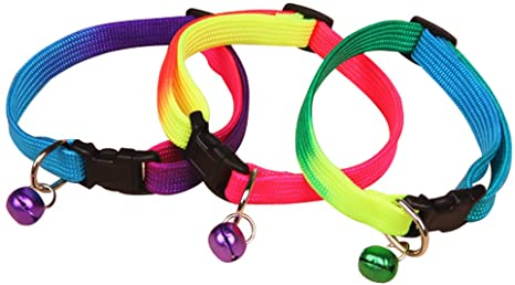 Regenboog halsband