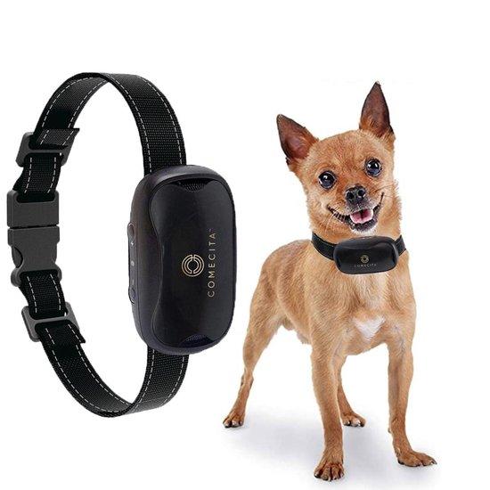 honden halsband met stroom