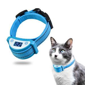 schok halsband kat